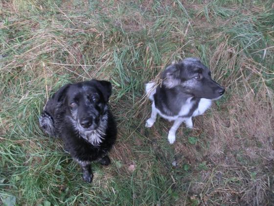 Tisha&Nilla 07